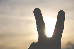 TWO FINGERS: peace. Symbol of peace, antiterrorist sign Royalty Free Stock Photo