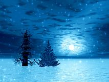 Two fir in Christmas night. Lonely Christmas trees in arctic. Illustration Stock Photo