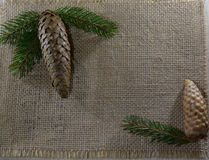 Two fir cones on the sack cloth Royalty Free Stock Images