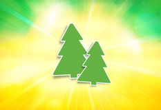 Two fir winter special Royalty Free Stock Photo