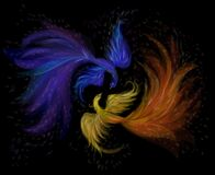 Free Two Firebirds Blue And Fiery On A Black Background, Vector Illustration Stock Images - 183458534