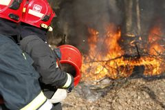 Firefighters extinguish forest fire stock photos