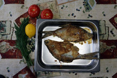 Two fish baked in the oven. Two fish in the oven Stock Photos