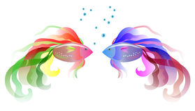 Two fish Royalty Free Stock Photo