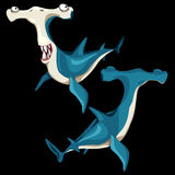 Two fish hammerhead on a black background stock illustration