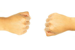 Two fish hand of the opposite side. On white background Stock Photography