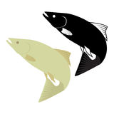 Two fish icon. On white background. vector format illustration Stock Images