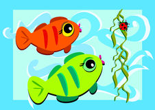 Two Fish and a Ladybug Royalty Free Stock Image
