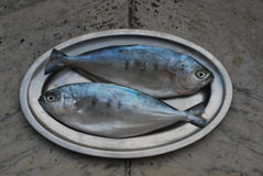 Two fish on a platter royalty free stock photos