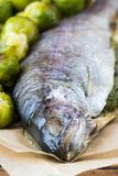 Two fish, rainbow trout stuffed with green herb sauce, Brussels Royalty Free Stock Photo