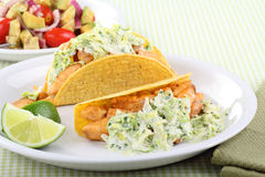 Two Fish Tacos Stock Photo