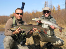 Two fishermans with fish. Taimen fly fishing in wildness Royalty Free Stock Photo