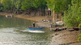 Phangnga, Thailand - 23th December, 2017: Fishermen talking on the river bank. Two fishermen at the end of a day talking on the shore of the village in mangrove stock video