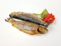 Two fishes. Fried fishes with tomato and herbs against white Royalty Free Stock Photos