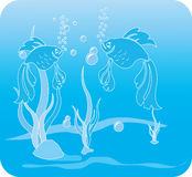 Two fishes dancing Royalty Free Stock Image