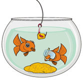 Two fishes with mask Royalty Free Stock Images