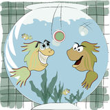Two fishes playing Stock Images