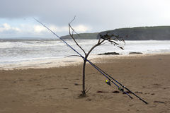 Two fishing rods supported by a branch Royalty Free Stock Photo
