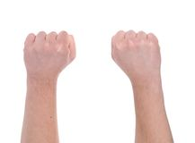 Two fists. Stock Photography