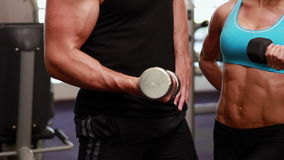 Two fit people holding dumbbells stock video