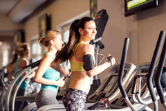 Two fit women running on treadmills in modern gym. Two attractive fit women running in sports clothes on treadmills in modern gym Stock Image
