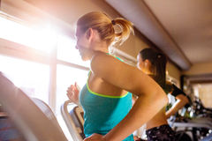 Two fit women running on treadmills in modern gym. Two attractive fit women running in sports clothes on treadmills in modern gym, sunny day, back view, rear Royalty Free Stock Images