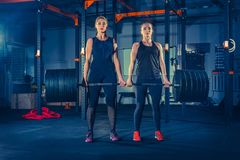 Fit young women lifting barbells and working out in a gym Royalty Free Stock Photo