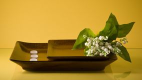 Two flat ceramic dishes with lily of the valley Stock Images