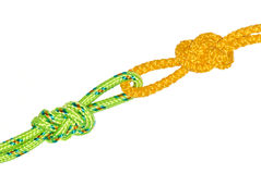 Two Flemish knots. Sewn into each other, isolate on white background Stock Photos