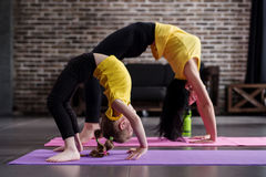 Two flexible girls of different age doing upward facing bow yoga pose working out stock photos