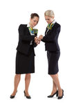 Two flight attendants Stock Image