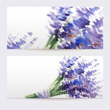 Two floral watercolor banners with bouquet of lavender Royalty Free Stock Photos