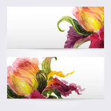 Two floral watercolor banners with iris flowers Stock Photography