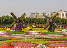 Two flower mills on the field of flowers Royalty Free Stock Image