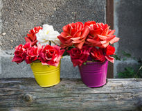 Two flowerpots with artificial roses Stock Photos