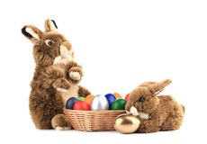 Two fluffy foxy rabbit in basket with Easter eggs. Stock Photo