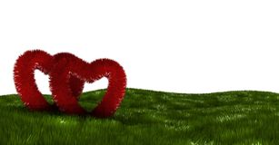 Two fluffy hearts on a green field Royalty Free Stock Images