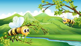 The two flying bees royalty free illustration