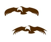 Two flying eagles with outspread wings Stock Photos