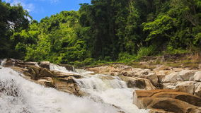Two foamy mountain streams against tropical plants blue sky. View of two foamy mountain streams among stones against tropical plants and blue sky stock video footage