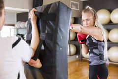 Two focused women boxing at the gym Stock Images