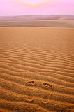Two footprints in sand in the desert Royalty Free Stock Images