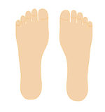 Two foots. Isolated on white background Stock Photos
