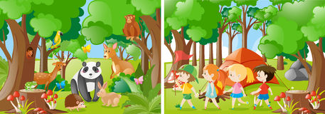 Two forest scenes with kids and wild animals Royalty Free Stock Images