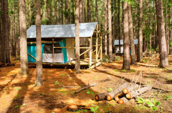 Two forest tent-houses after rain Stock Image