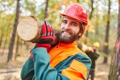 Two forest workers carry a tree trunk. Two forest workers together carry a tree trunk in the forest during the harvest royalty free stock photography