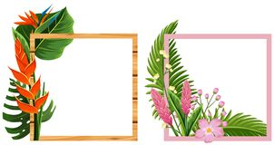 Two frame design with flowers and leaves Stock Photos
