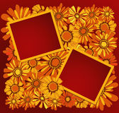 Two  frame with flowers Stock Photo