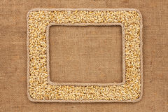 Two frame made of rope with barley grains on sackcloth Royalty Free Stock Photo