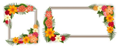 Two frames with colorful flowers. Illustration Stock Photography